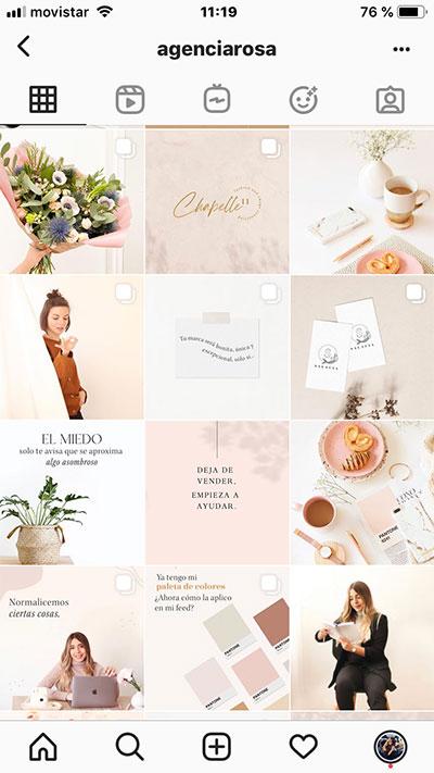 Instagram de Agencia Rosa